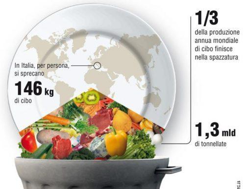 15 miliardi di cibo buttato ogni anno: lo spreco alimentare è una vergogna